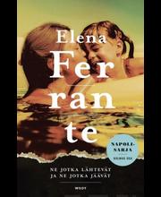 Ferrante, Ne jotka lähtevät, ne jotka jäävät (jättipokkari)