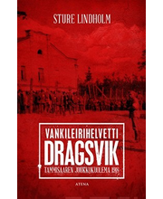 Sture Lindholm, Vankileirihelvetti Dragsvik. Tammisaaren Joukkokuolema 1918