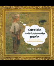 Salmi, Ottaisin mieluummin ponin ja muita totuuksia Suomen taiteen helmistä