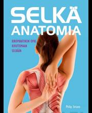 Striano, selkä - anatomia