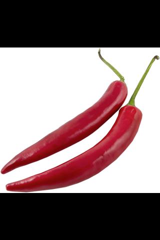 Chili Punainen 5 Medium