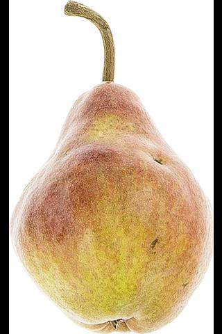 Päärynä max red bartlett