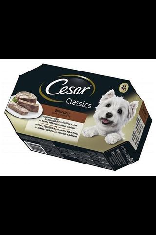 Cesar Classics 4x150g Selection kana&kalk, härkä&maksa, vasikka&kana, lammas&kalk täysrehua aik koirille