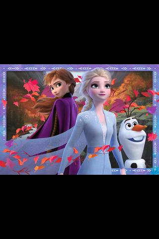 Frozen 2 2x24p