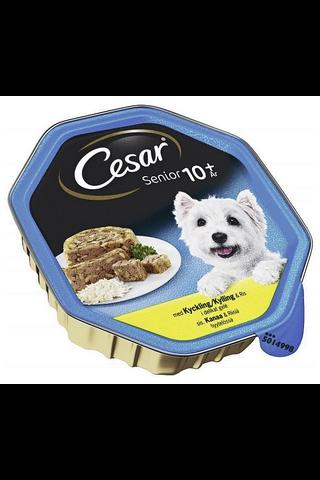 Cesar 150g Senior sis.Kanaa & Riisiä hyytelössä, täysrehua ikääntyville koirille
