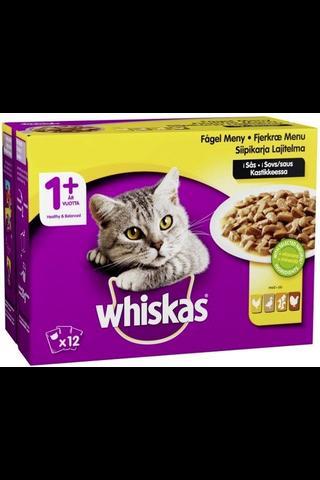 Whiskas 1+ Siipikarjalajitelma kastikkeessa 12x100g