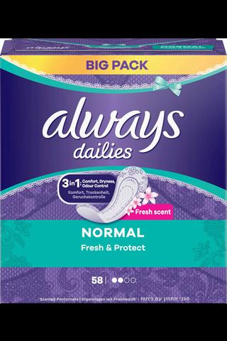 Always 58kpl Fresh Normal pikkuhousunsuoja
