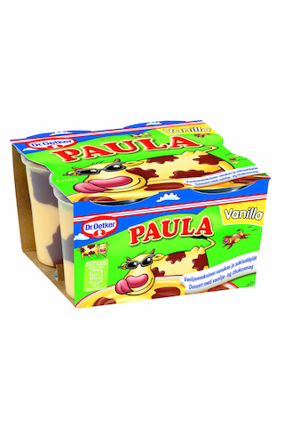 Dr.Oetker Paula 4x125g vaniljavanukas ja suklaatäplät