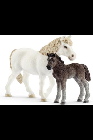 Schleich Pony tamma & varsa figuuri