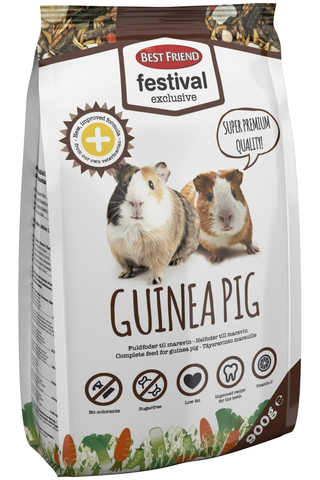 BF Festival Exclusive 900g Guinea pig