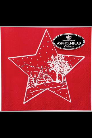 Asp 33cm christmas star red