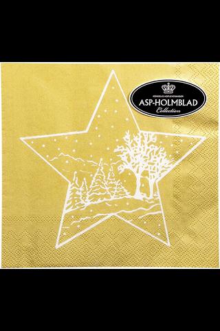 Asp 25cm christmas star gold