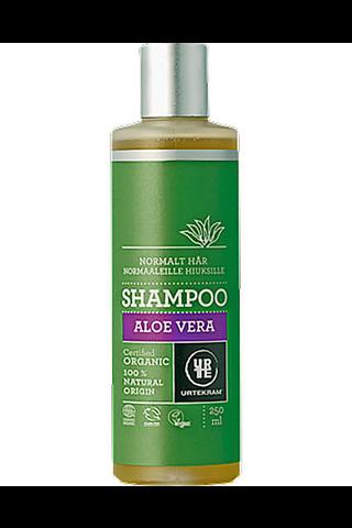 Urtekram luomu Aloe vera shampoo normaalit 250ml