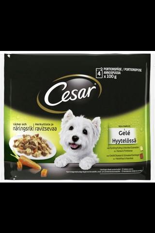 CESAR 4x100g hyytelössä, Kanaa&Porkkanaa, Häränlihaa&Kasviksia, täysrehua aikuisille koirille