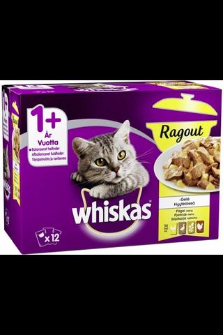 Whiskas 1+ Ragout Siipikarjalajitelma hyytelössä 12x85g