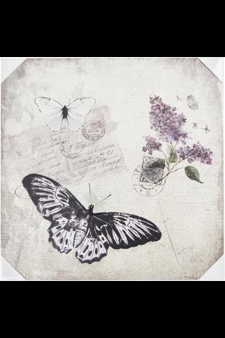 House Papillion canvastaulu 50x50 cm