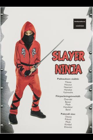 Slayer Ninja rooliasu CA26638V1