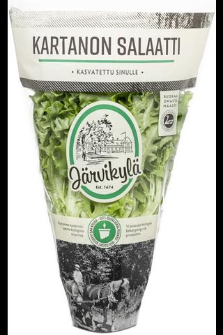Järvikylä min115g Kartanon salaatti