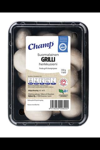 Champ Grilli Herkkusieni