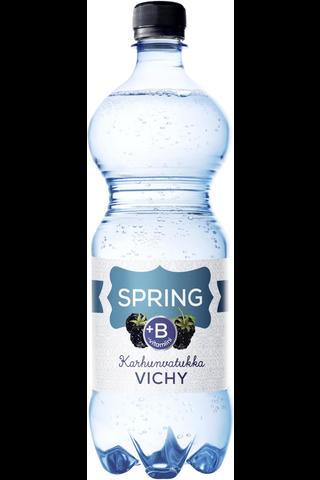 Spring 0,95l Vichy+B karhunvatukka