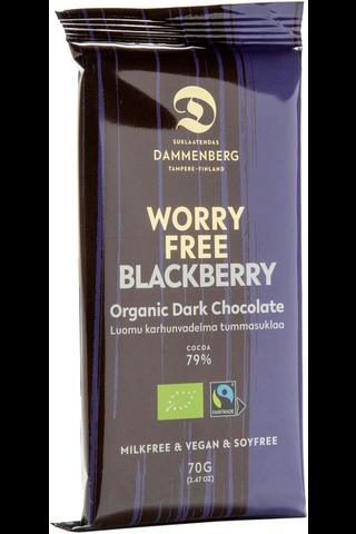 Luomu Reilunkaupan Karhunvadelma tumma suklaalevy