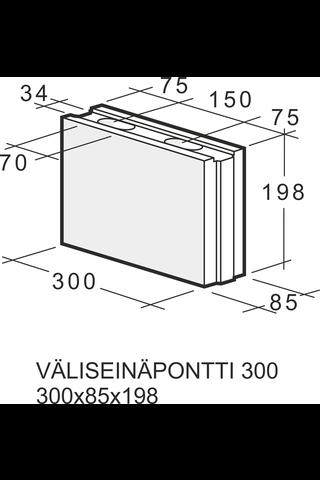 Kahi Väliseinäpontti 300 300x85x198 1 kpl