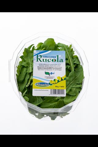 Rucola Suomalainen