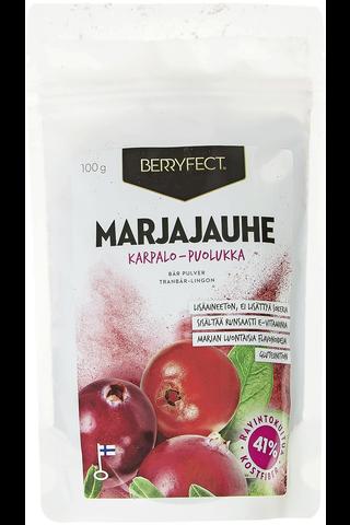 Berryfect 100g karpalo-puolukka marjajauhe