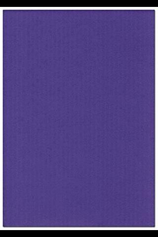 Karto kartonki lila 50x70cm 220gsm 5ark/pss