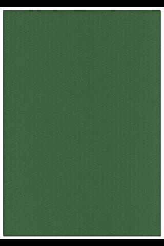 Karto kartonki ruohon vihreä 50x70cm 220gsm 5ark/pss