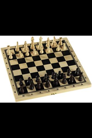Alga shakki laatikossa