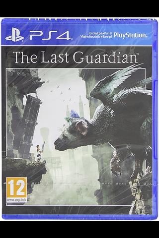 PlayStation 4 peli The Last Guardian