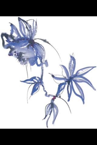 Jukka Rintala 20kpl 24cm 3-krs Blue Velvet lautasliina