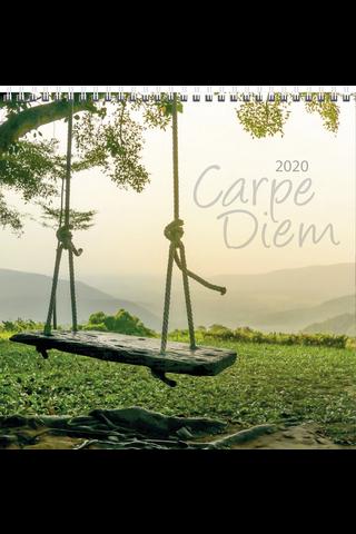Seinäkalenteri 2020 Carpe Diem 300 x 600 mm Burde