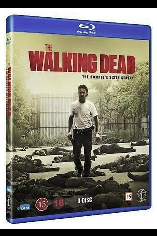 Bd walking dead 6 kausi