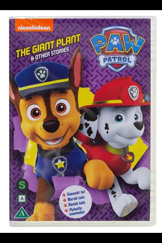 Dvd Paw Patrol 30