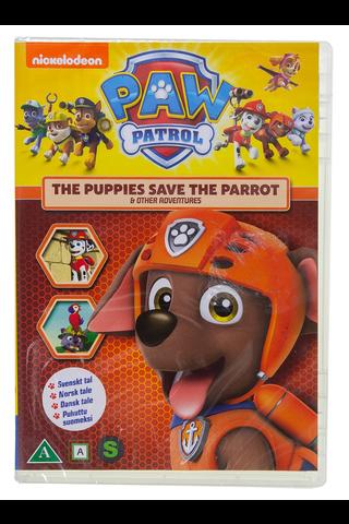 Dvd Paw Patrol 15