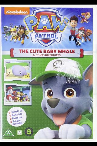 Dvd Paw Patrol 1