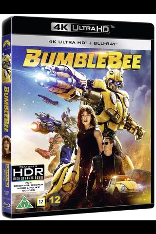 4K Bumblebee