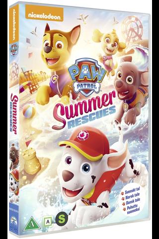 Dvd Paw Patrol Summer Re