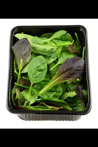 Salaattisekoitus
