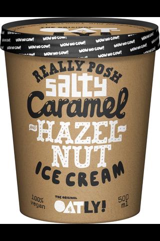 Oatly 500ml Really Posh Salty Caramel & Hazelnut hasselpähkinä-karamellijäätelö