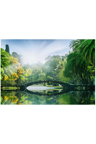 Idealdecor valokuvatapetti Bridge in the Sunlight 00132 8-osainen 366x254cm