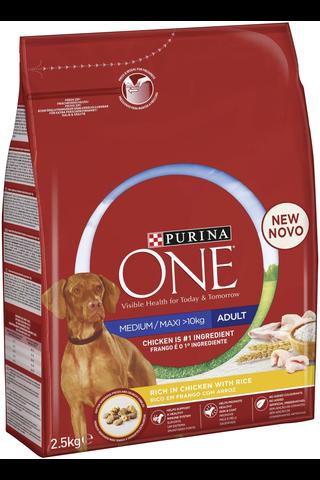 Purina ONE 2,5kg Medium/Maxi Adult runsaasti kanaa, sisältää riisiä koiranruoka