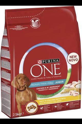Purina ONE 2,5kg Medium/Maxi Junior runsaasti kanaa, sisältää riisiä koiranruoka
