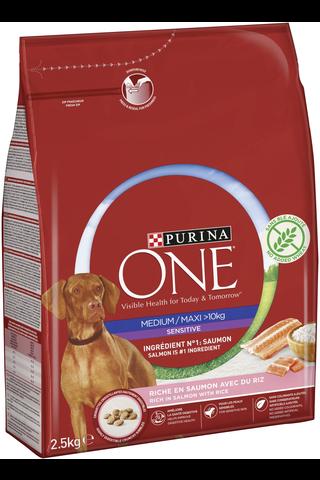 Purina ONE 2,5kg Medium/Maxi Sensitive runsaasti lohta, sisältää riisiä koiranruoka
