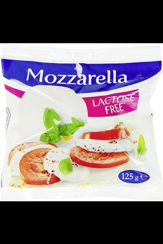 Castelli mozzarella laktoositon