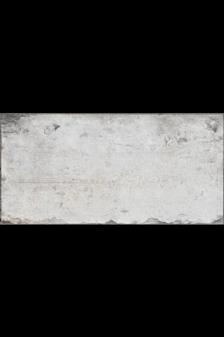 DPT 05 Valkoinen 10X20 Lasitettu Laatta