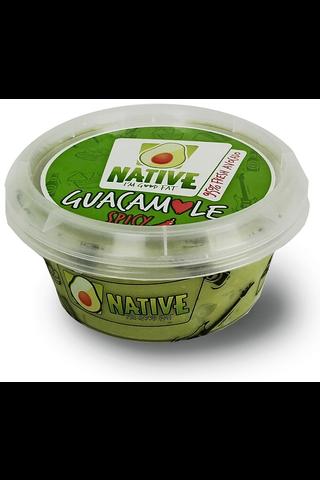 Guacamole Dippi Tulinen