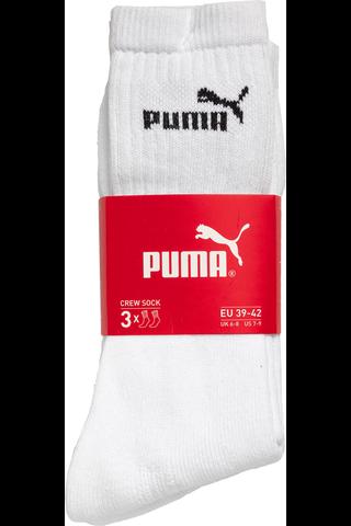 Puma urheilusukat 3-pack